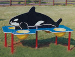 Whale Sand/Water Table, Permanent Mount